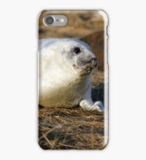 Fluffy frey seal pup iPhone Case/Skin