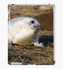 Fluffy frey seal pup iPad Case/Skin