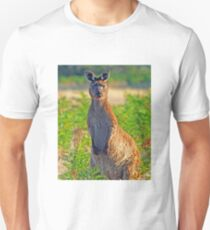 A Kangeroo with Attitude! Unisex T-Shirt