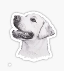 Labrador Retriever Dog Portrait Drawing Sticker