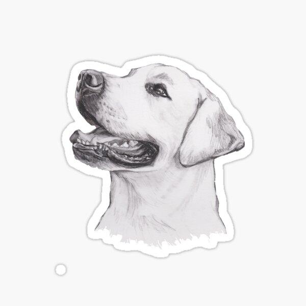 Labrador Retriever Dog Portrait Drawing Sticker