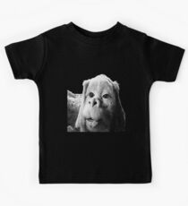 Falkor The Luck Dragon From The Neverending Story Design Kids Tee