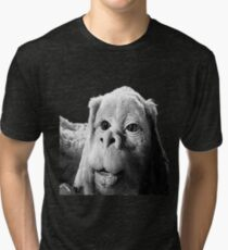 Falkor The Luck Dragon From The Neverending Story Design Tri-blend T-Shirt