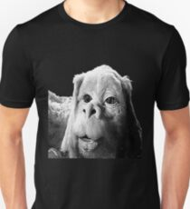 Falkor The Luck Dragon From The Neverending Story Design Unisex T-Shirt