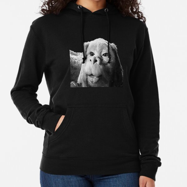 Falkor The Luck Dragon From The Neverending Story Design Lightweight Hoodie