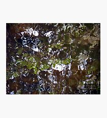 Camouflage Tiles Photographic Print