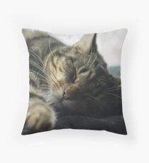 Sleeping Elsa Tabby Cat Throw Pillow