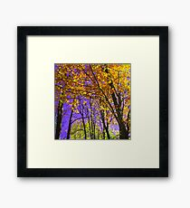 Purple Sky Framed Print