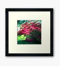 Spring Pink Sun Green Framed Print