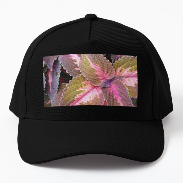 PLANT IT Baseball Cap