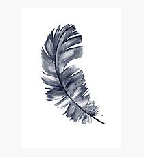 Navy Feather Art Print Blue Watercolor Painting Illustration  Photographic Print