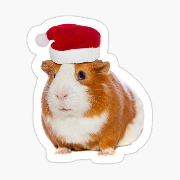 Guinea Pig in Santa's hat Sticker