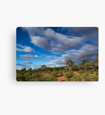 Colours of the Outback - Kilcowera Station Canvas Print