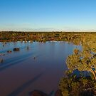 Cardenyabba Lagoon from the Air - Kilcowera Station by Malcolm Katon