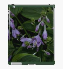 Hosta Plant with Beautiful Purple Flowers iPad Case/Skin