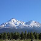 Mt Shasta North Face by Jamie Peterson
