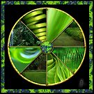 Green Wheel  by Jane Marin