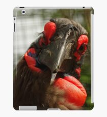 Lashes iPad Case/Skin