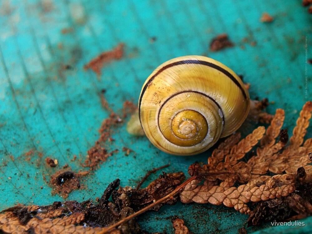 Yellow Snail House VRS2 by vivendulies