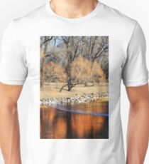Willow Reflection T-Shirt