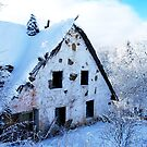 The old Cottage  by Imi Koetz