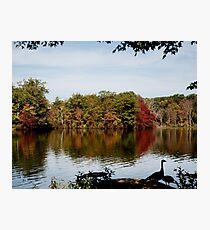 Beginning of Autumn Photographic Print