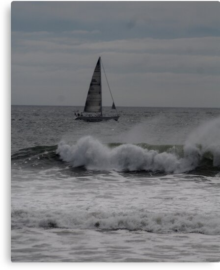 Surf and Sail by Barry Doherty