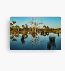 Outback Beauty - Kilcowera Station Canvas Print