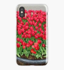 A lot of red tulips iPhone Case/Skin