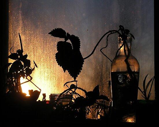 Winter Window by Barry Doherty