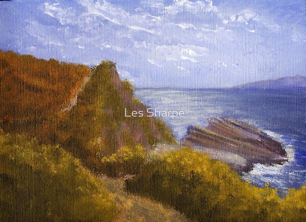 Along the cliffs, Agios Stefanos, Corfu by Les Sharpe