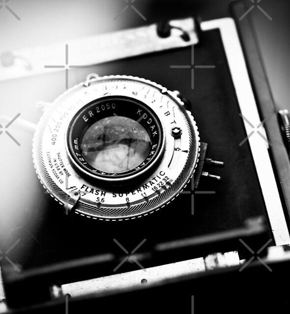 Camera by Jennifer Durant