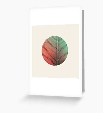 Leaf In Vein Greeting Card