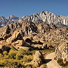 Alabama Hills by Barbara  Brown