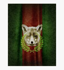 House of Nuallán Coat of Arms Photographic Print