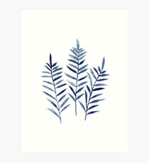 Fern Blue Botanical Watercolor Painting Image Picture Drawing Art Print