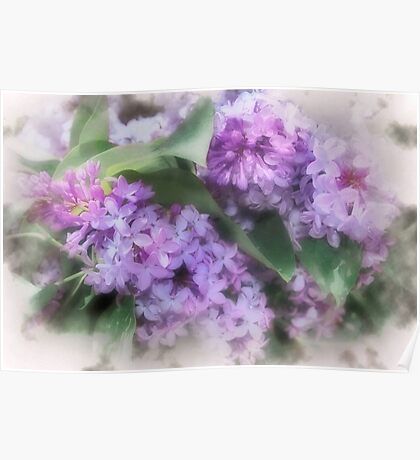 Sweet Purple Poster