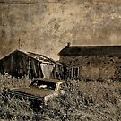 Abandoned Homestead by sundawg7