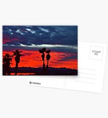 New Year Sunset Postcards