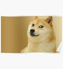 Doge wow Poster