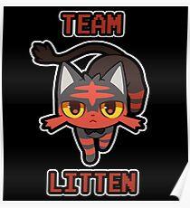 Team Litten Poster