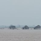 Fog on the Irrawaddy 1 by Werner Padarin