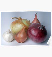 A Family Allium Poster