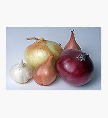 A Family Allium Photographic Print