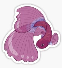 Purple, Gold and Blue Betta Fighting Fish  Sticker