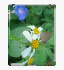 Banded Hairstreak in Spanish Needles iPad Case/Skin