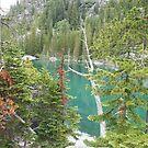 Colchuck Glacier Lake - Cascades N.P.  by Braedene