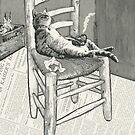 The cat's chair von catFreud