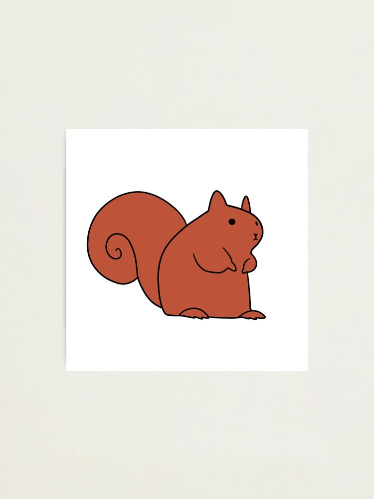 Alternate view of Cute Red Squirrel Photographic Print