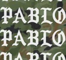 pablo jacket camo  Sticker